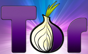 Como Instalar e Configurar o Tor Browser no Linux – Navegue na internet no total anonimato