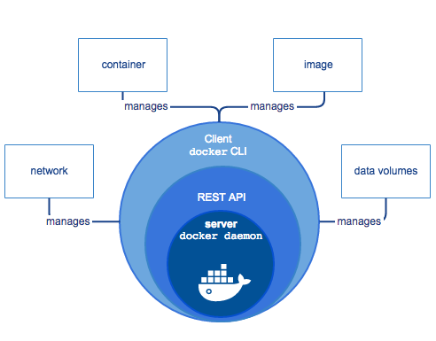 componentes do container docker